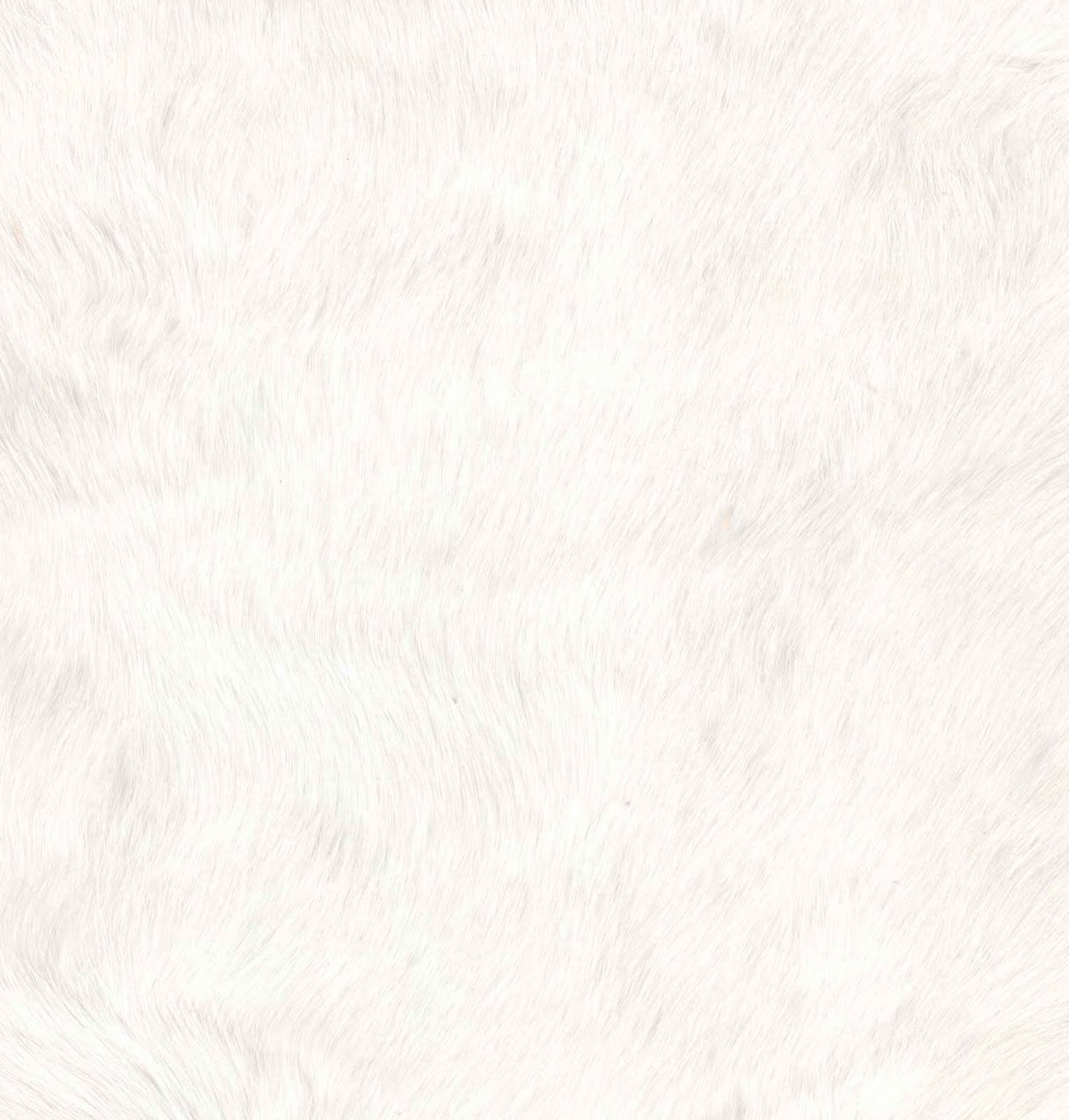 Http Galleryhip Com White Fur Html