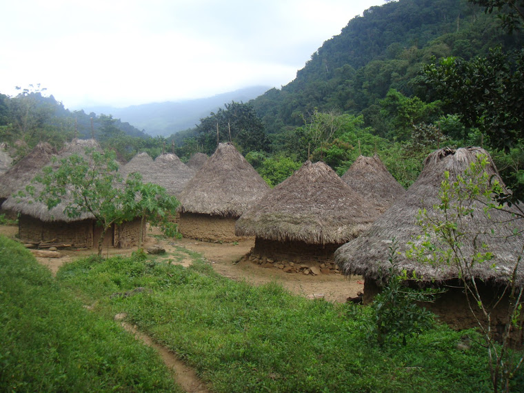 La ciudad perdida en La Sierra Nevada de Santa Marta.