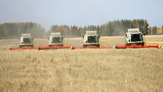 Russia by 2030 could increase grain production to 127-141 million tons