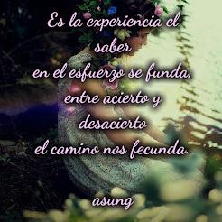 ES LA EXPERIENCIA...