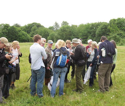 Mike Edwards showing the group an insect in the meadow at Darrick Wood. 22 May 2011.