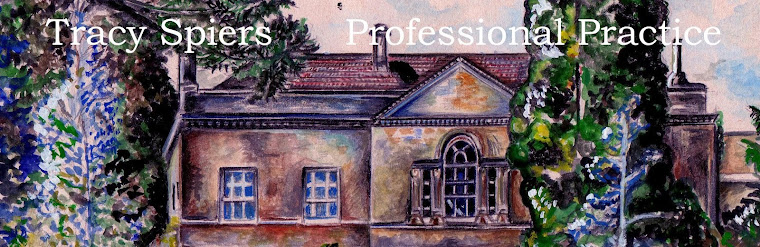 Tracy Spiers Professional Practice