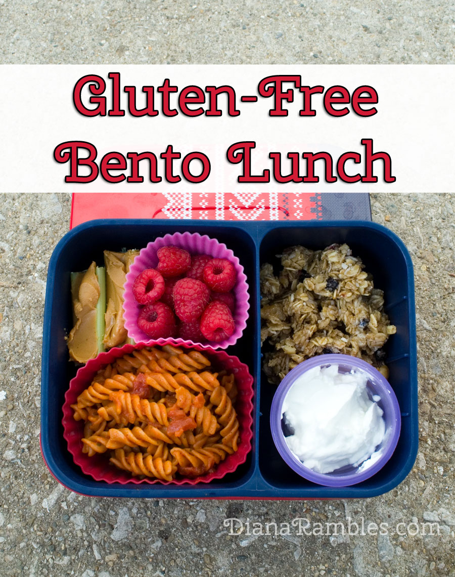 http://2.bp.blogspot.com/-0_N1XvR7rnE/VMmSaDV1YhI/AAAAAAAAWIA/GKrRGf569-I/s1600/Gluten-Free-Bento-Lunch.jpg