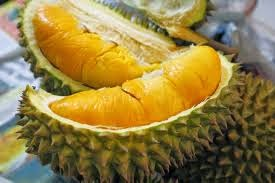 Durian Fruit for Health Benefits