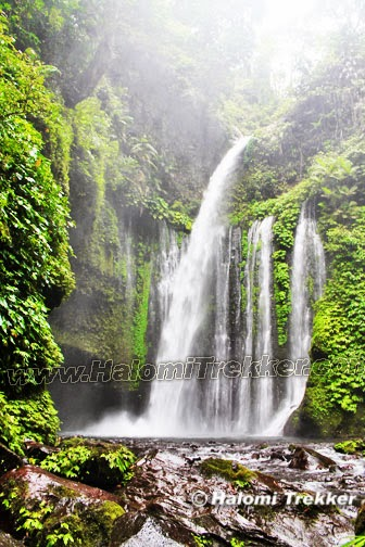 Tiu Kelep Waterfall Senaru