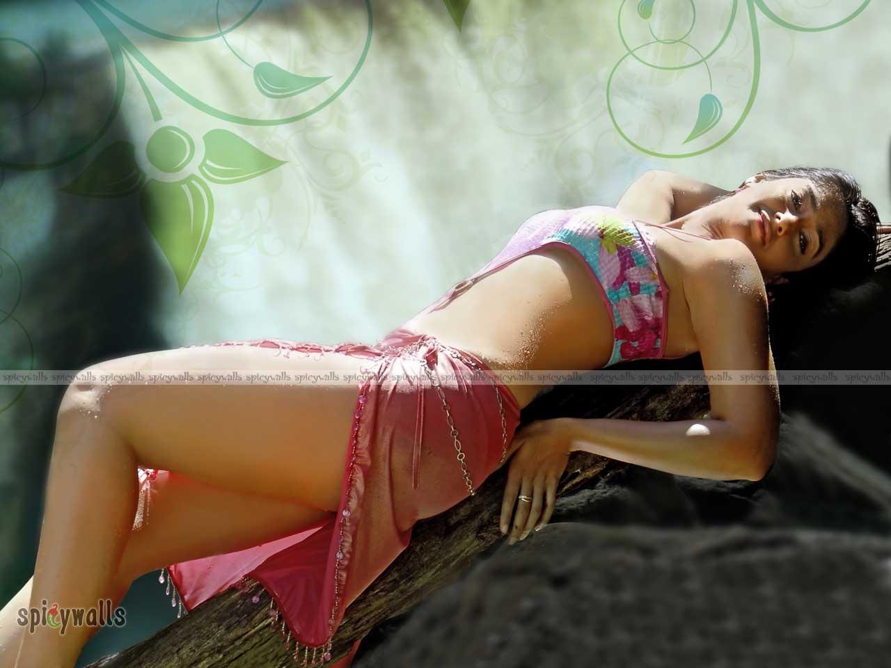 http://2.bp.blogspot.com/-0aU_zRnqi94/UFTU_yibApI/AAAAAAAADVk/5_GXuc1cFoQ/s1600/Ileana_Bikini_Picture.jpg