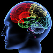 BRAIN is an acronym that stands for Brain Research through Advancing .