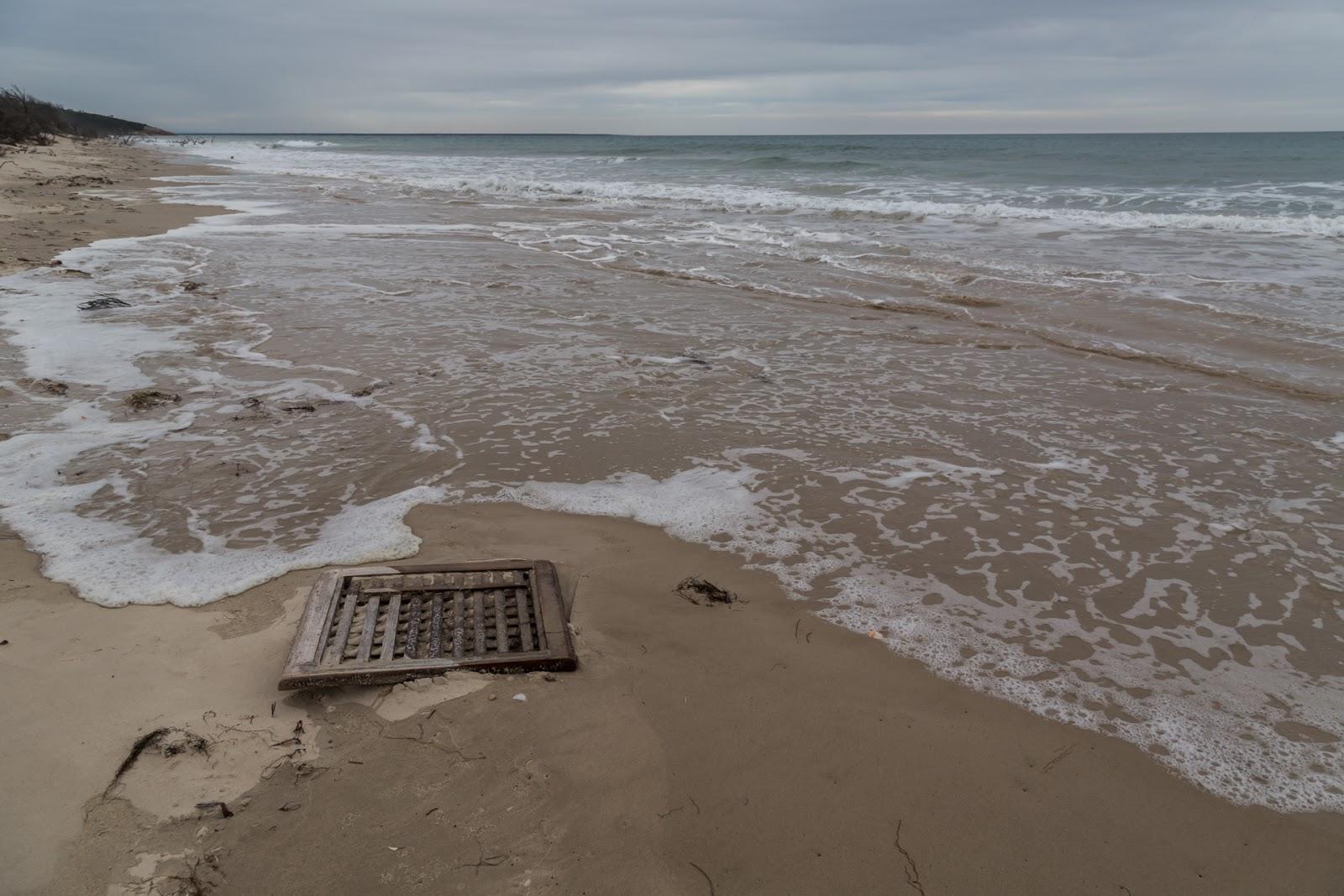 timber flotsam three mile beach wilsons promontory