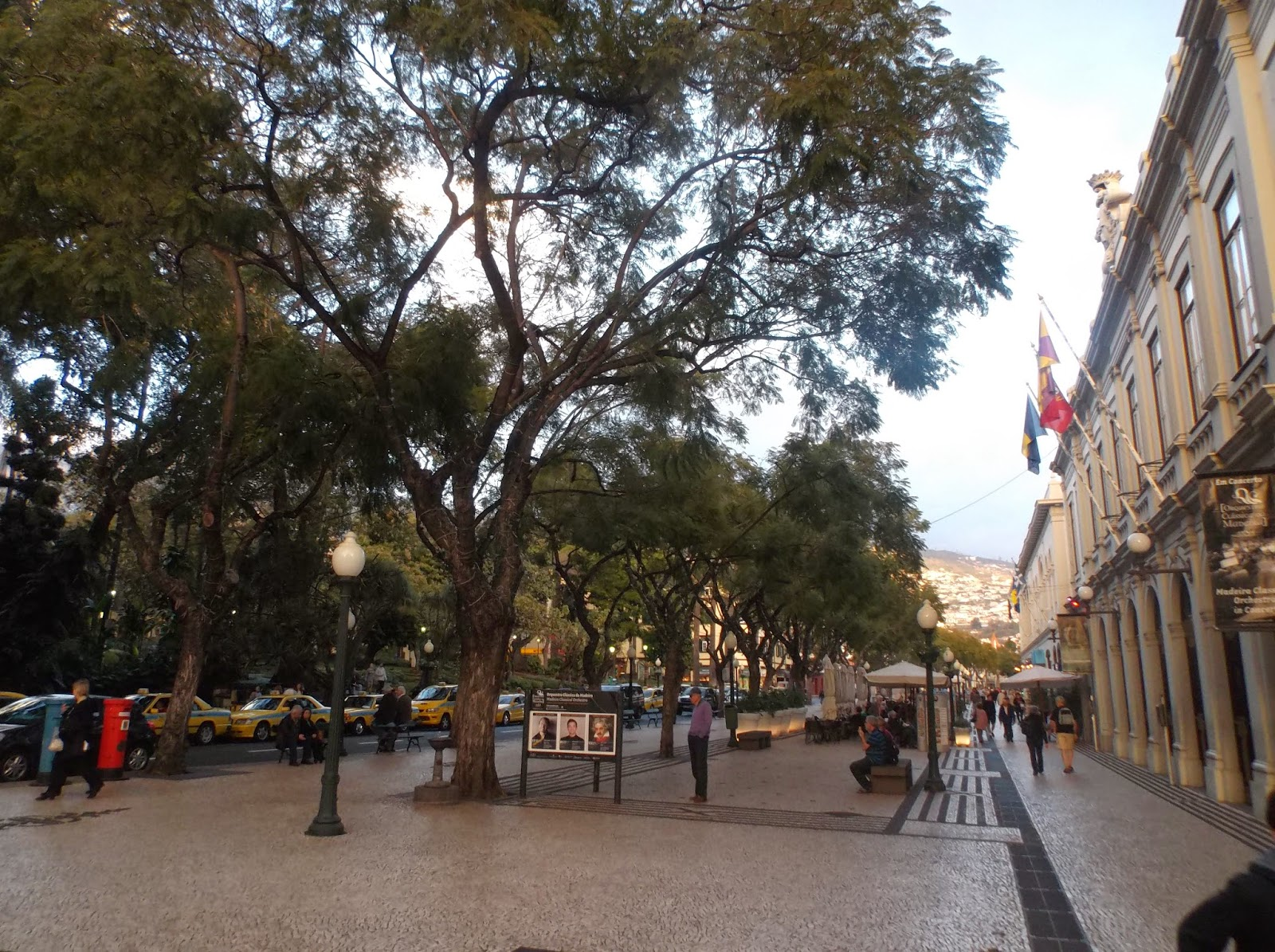 Funchal, Madeira high main street