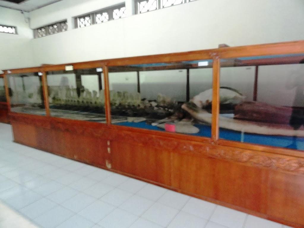 Kerangka ikan Jokotuo