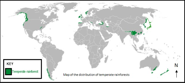 Temperate rainforest extent of deforestation figure 2 a map of the current distribution of temperate rainforests in the world sourcewikipedia scale unknown gumiabroncs Images