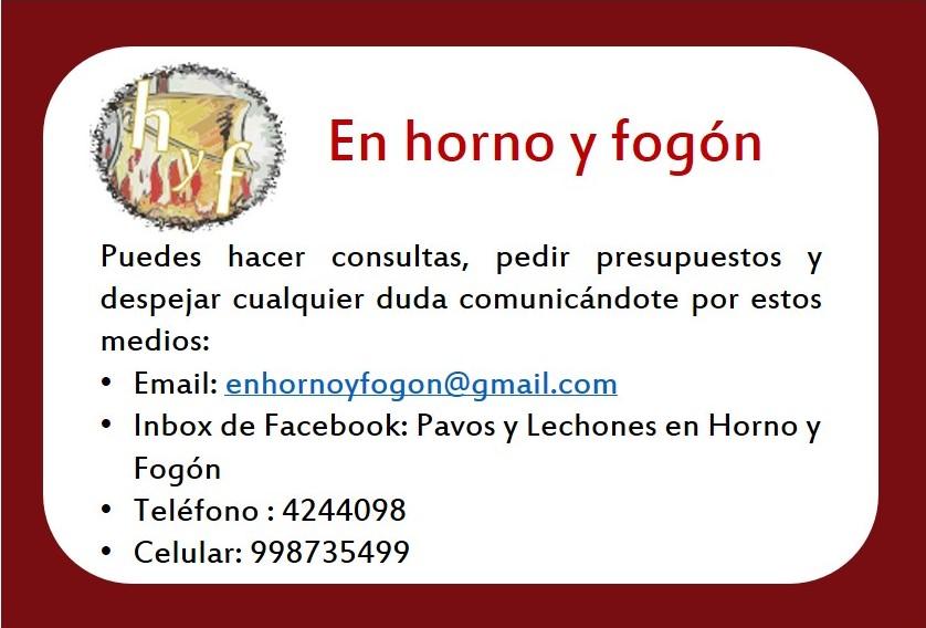 Ponte en contacto con nosotros