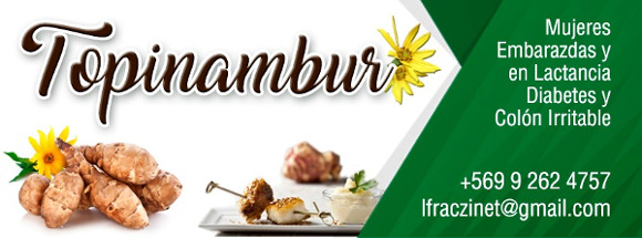 Topinambur - Alimento para Diabéticos