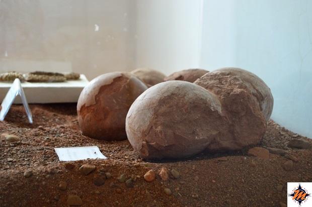 Yolyn Am, Museo della Natura