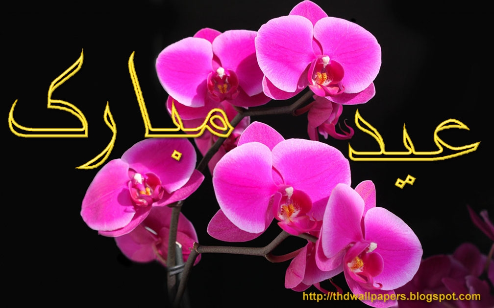 Beautiful eid mubarak flowers cards 3 m4hsunfo