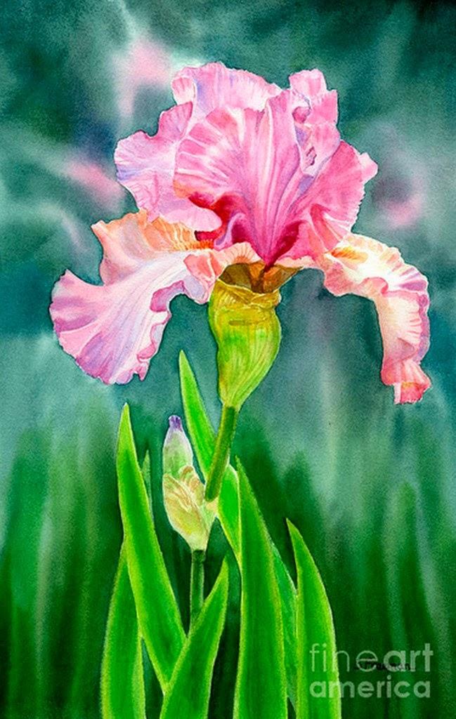 Cuadros Modernos Pinturas y Dibujos : Cuadros de Flores Muy Grandes