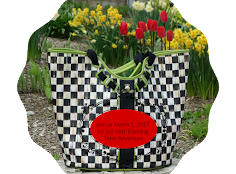 NEXT TALES OF THE TRAVELING TOTE 3/1/17