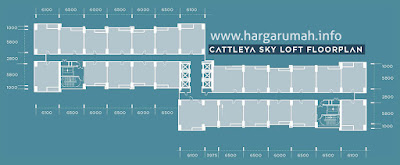 cattleya sky loft floorplan