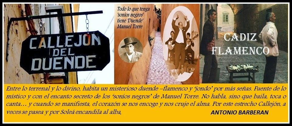 Callejón del Duende - Cádiz Flamenco