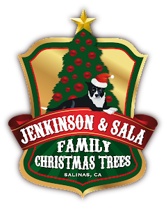 Jenkinson  & Sala Family Christmas Trees