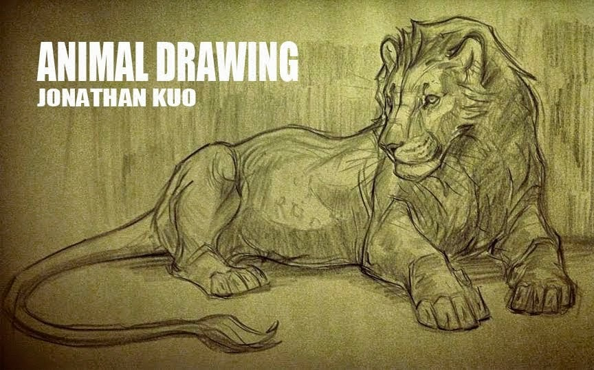 animal drawing fall 2014