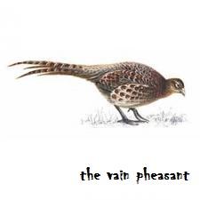 the vain pheasant