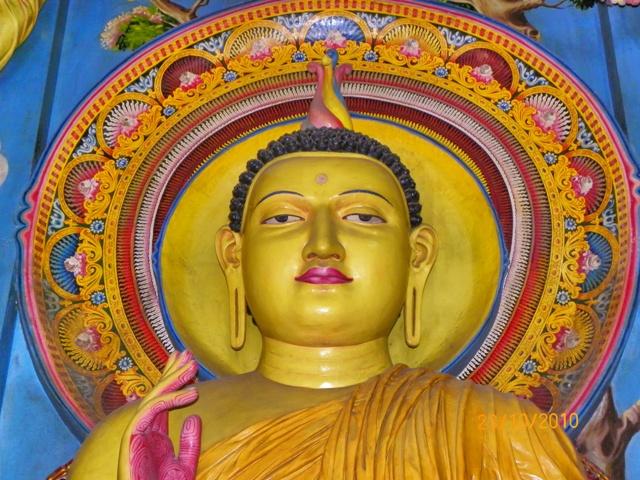 Buda en un templo en Colombo