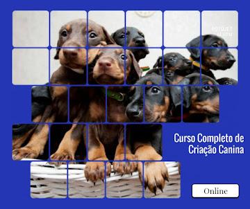 Curso Completo de Criação Canina (curso on-line)