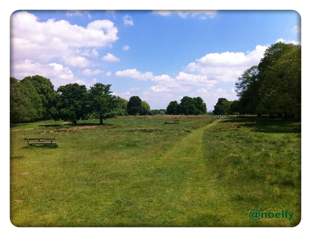 Noelfy Travel Tales Richmond Deer Park In London