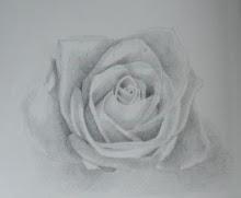 Whisper Flower P