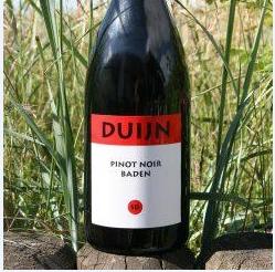 Besuchen Sie das Weingut Duijn