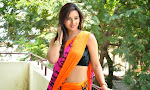 Isha Chawla latest glam pics in saree-thumbnail