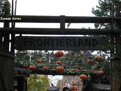 paris-disneyland-intrarea-in-frontierland