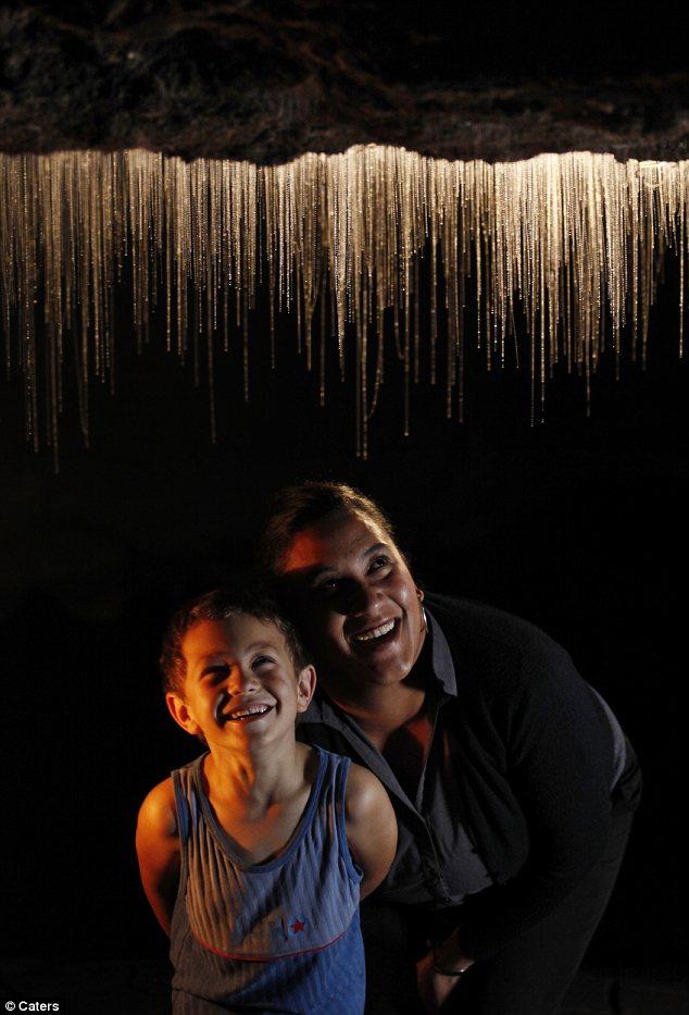 Te Anau Glow-worm Caves