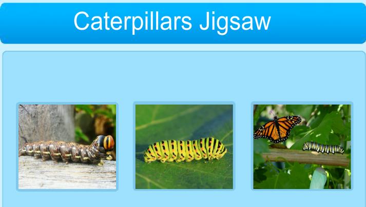 Online Jigsaw Puzzle (Caterpillar)