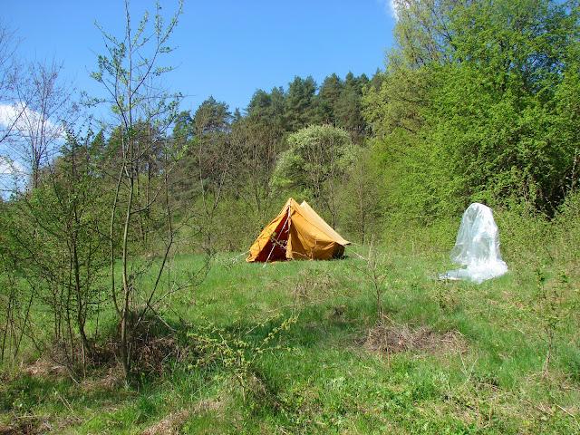 Палатка на просушке