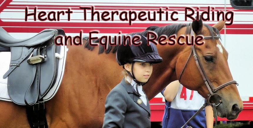 Heart Horse Rescue