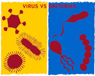 Virus bacterias enfermedad bebé