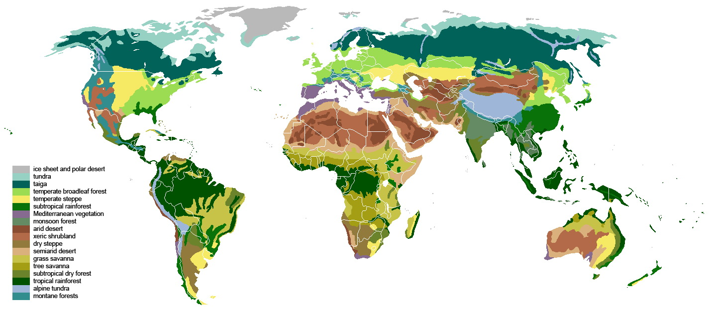 the different biomes present in nature What is a biome biomes are very large ecological areas on the earth's surface, with fauna and flora (animals and plants) adapting to their environment.
