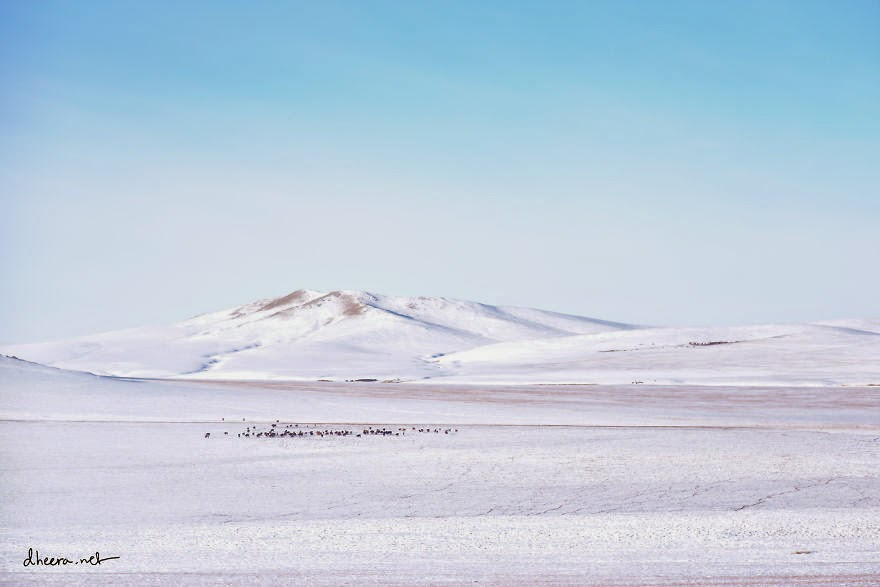 It doesn't snow that much in Mongolia, but since temperatures never climb above 0 for several months, snow that fall stick and stas until the following summer. - Winter In Mongolia Is Cold But Incredibly Beautiful