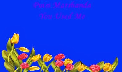 Puisi Marshanda - You Used Me