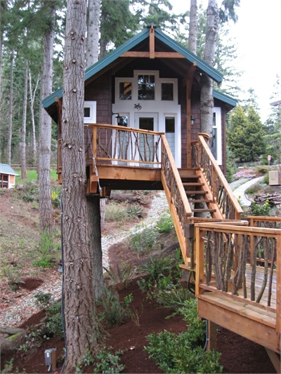 12 modern tree house designs most beautiful for Modern tree house designs