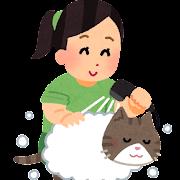 猫を洗う人のイラスト