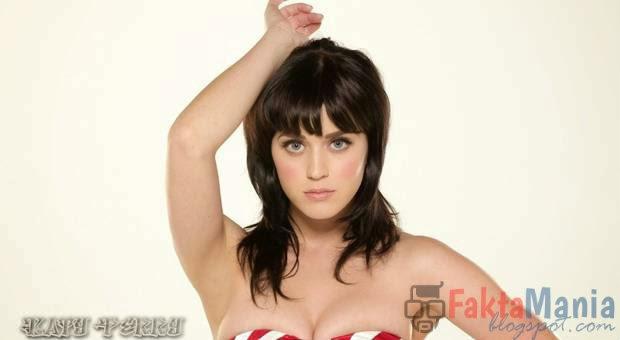 7 Fakta Artis Katy Perry yang Mengejutkan