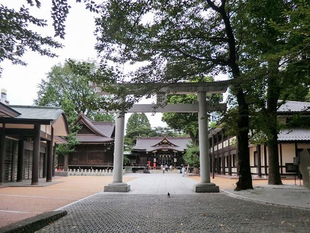 熊野神社,鳥居,拝殿,新宿〈著作権フリー無料画像〉Free Stock Photos