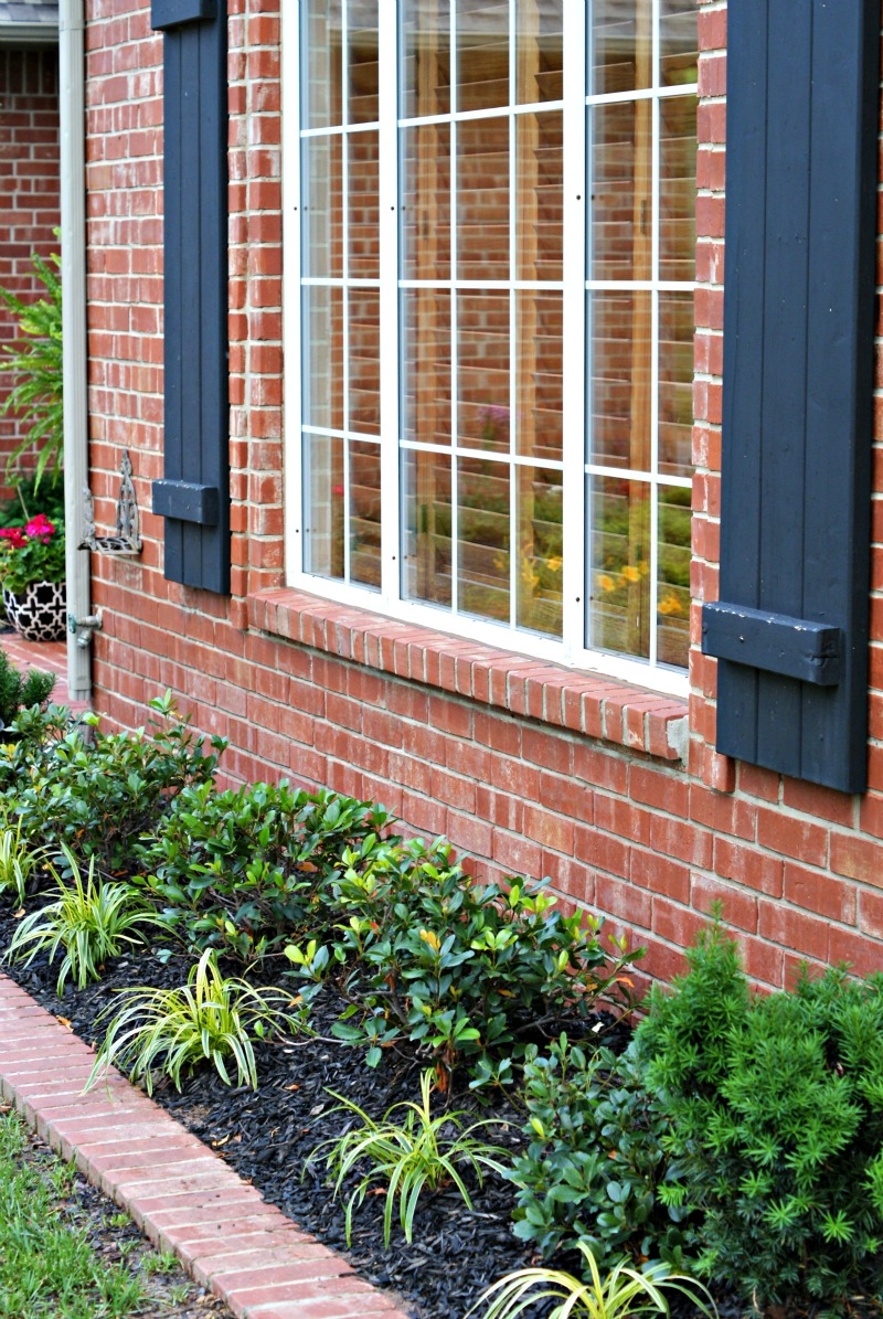 Front yard landscaping dimples and tangles for Front window ideas home