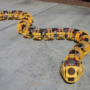 See Robot Snake That Can Climb and Swim to Help Disaster Victims
