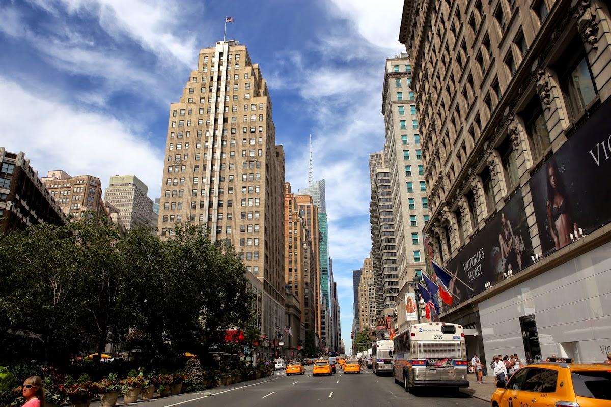 Golden koi in New York