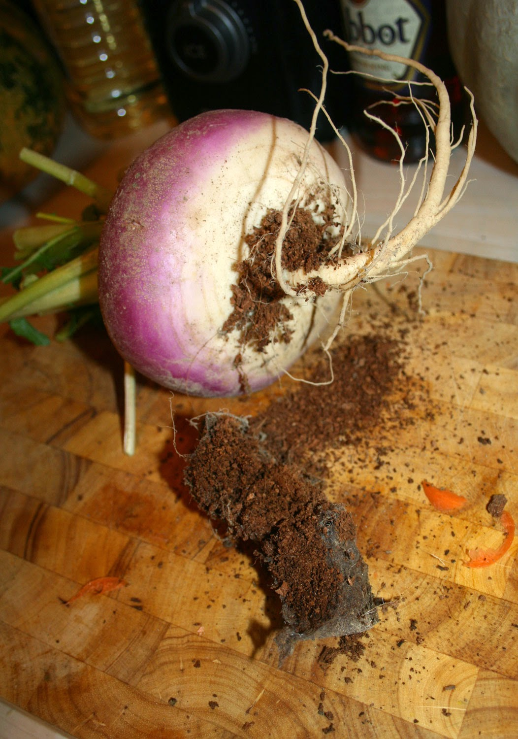 Turnip ready for chopping