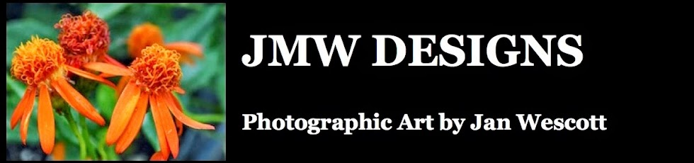 JMW Designs